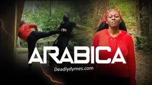 DeadlyDymes | Deadly Dymes | ARABICA